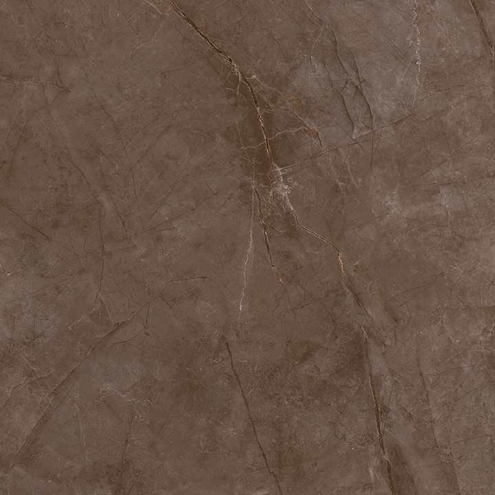 Metissage Nuez 60x60. High gloss finish large format stone look bathroom floor tile.